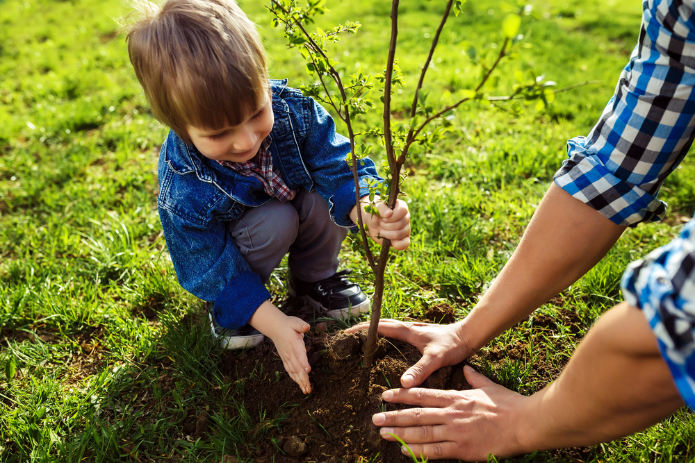 HomeLife Power Realty Inc. & Plant a Tree Program in Guelph